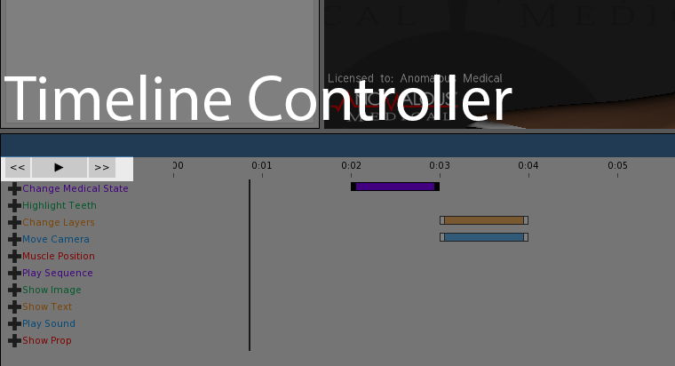 This screenshot shows the timeline controller.