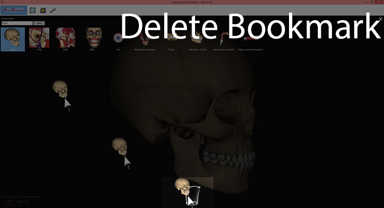 This screenshot shows deleting a bookmark.